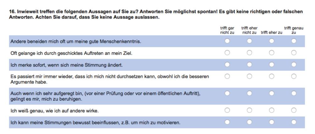 Ausschnitt aus dem Fragebogen von Pia Weißberg mit insgesamt 98 Items